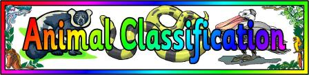 Free Animal Classification Banner