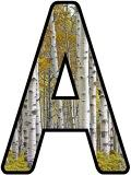 Free printable Silver Birch tree background instant display digital lettering sets for classroom display, scrapbooking etc.