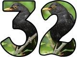 Free printable Blackbird background instant display lettering sets for classroom bulletin board display.