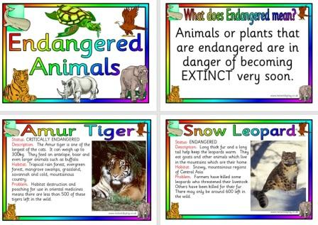 KS1 and KS2 Science Teaching Resources, Posters for Classroom Display ...