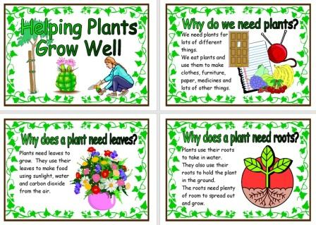 Free Printable Helping Plants Grow Well Posters