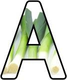 Free Leek display lettering
