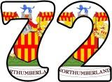Free printable Northumberland shield background instant display lettering sets.  Classroom display letters