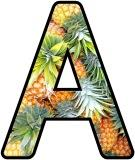 Free printable instant display lettering sets with a Pineapple background.