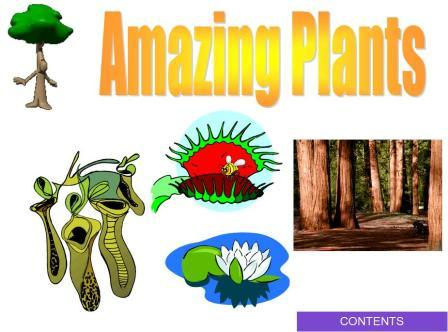 Amazing Plants PowerPoint Presentation