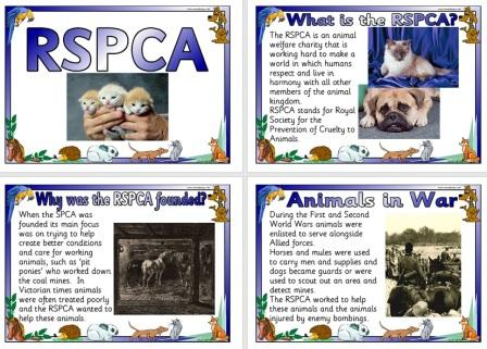 Free Printable RSPCA Information Posters for Schools
