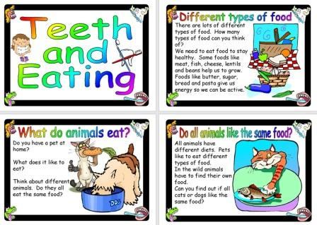 Free Science Posters Teeth and Eating