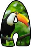 Free printable instant display digital lettering sets with a Toucan background.