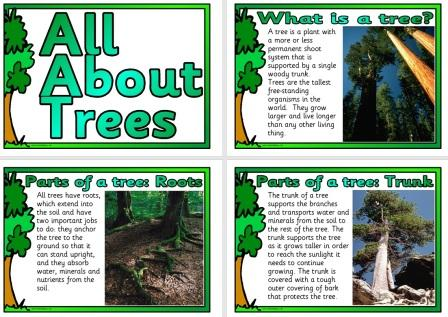 Free Science Posters About Trees